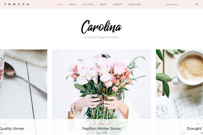 Carolina – Personal Blogger Template