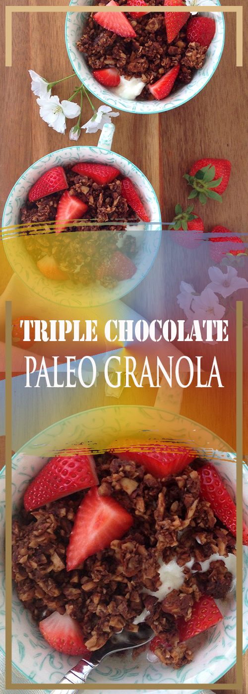 TRIPLE CHOCOLATE PALEO GRANOLA RECIPE