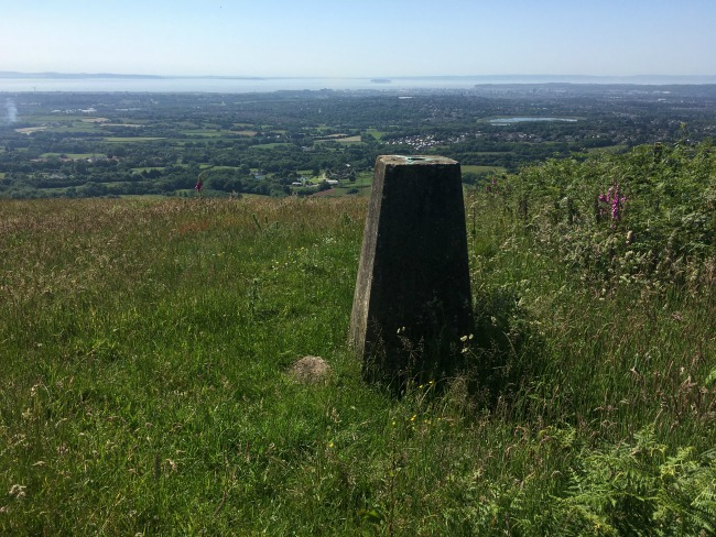 #MySundayPhoto-Number-44-trig-point-at-Llwyn-Celyn-whips-near-cardiff
