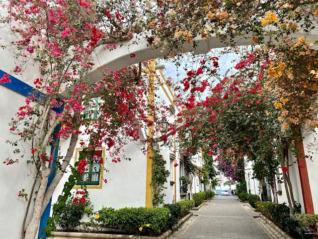 Colourful flowers between the white houses in Puerto Mogan, Gran Canaria, Spain