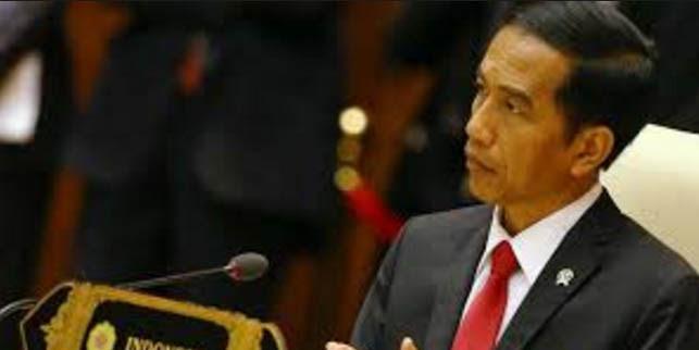 KTT G20, Jokowi Ingin Bangun Ekonomi Afrika