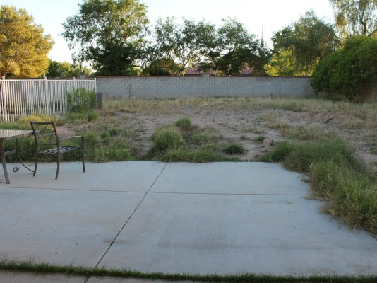 Backyard Landscaping Project: The Before