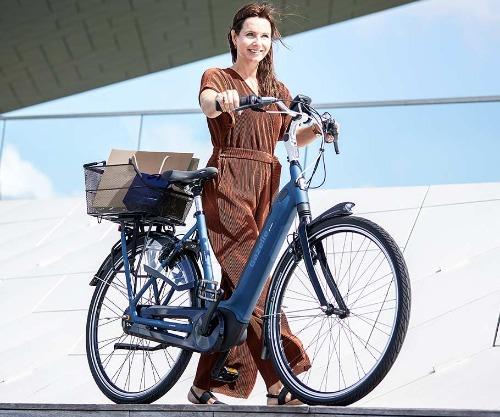Gazelle Grenoble e-bike