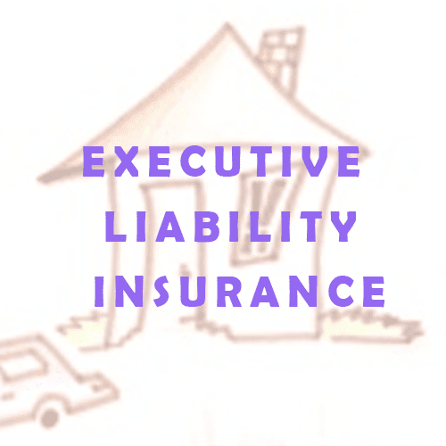 Executive Liability Insurance – Why Private Companies Need It