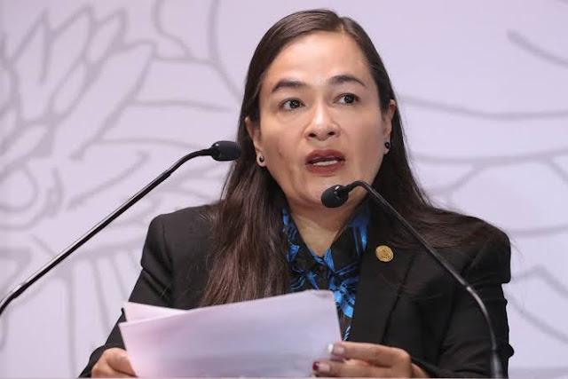 coordinadora de los diputados del PRD, Verónica Juárez Piña