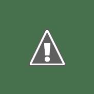 Grants & Business Development Coordinator | Alight  jobs