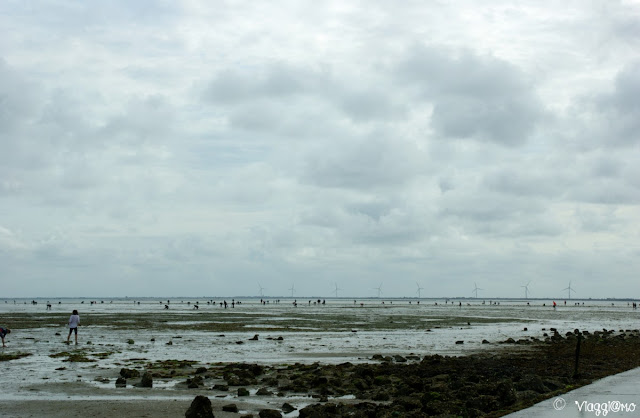 La pesca a piedi lungo il Passage du Gois