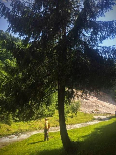La Cascada Urlatoarea