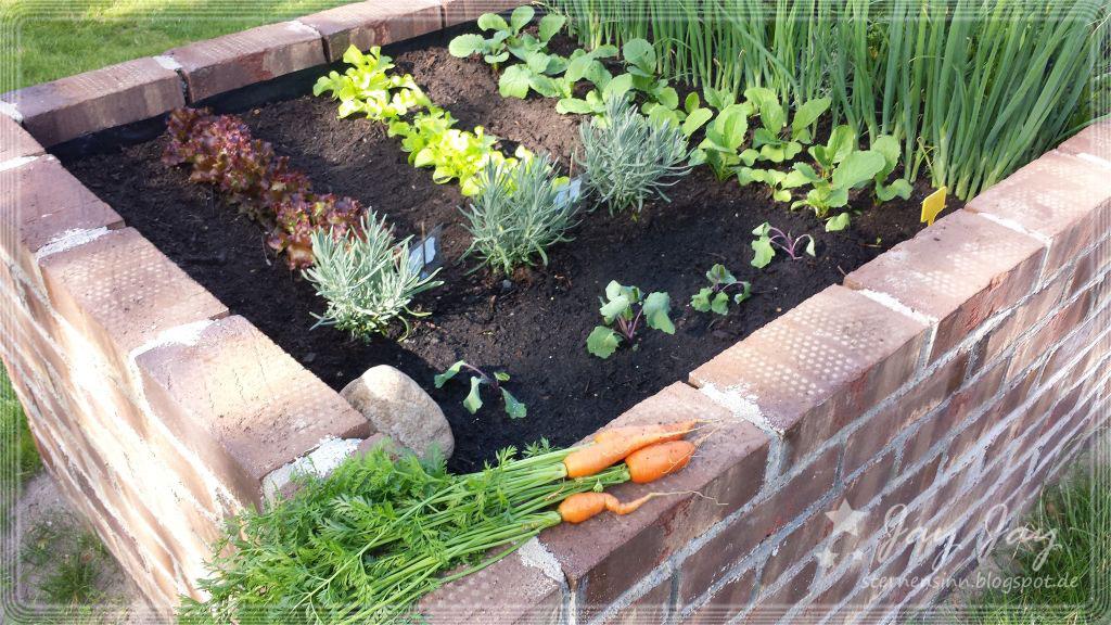 Hochbeet Welche Pflanzen Im 1 Jahr Wohn Design