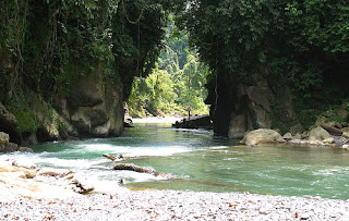 Gambar Tangkahan Sumatera Utara