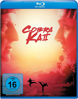 Cobra Kai – Temporada 2 [2xBD25] *Con Audio Latino