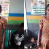 35 YEARS OLD LADY ARRESTED FOR MOLESTING 4-YEAR -OLD NIECE WITH HOT KNIFE