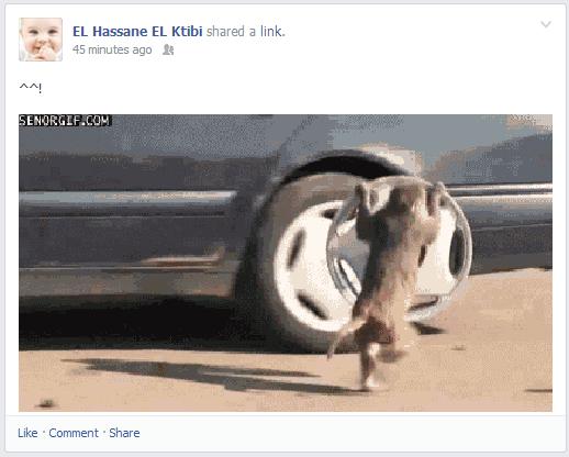 """كيف تنشر الصور المتحركة """"GIF"""" على الفيسبوك أو التويتر بطريقة رائعة"""