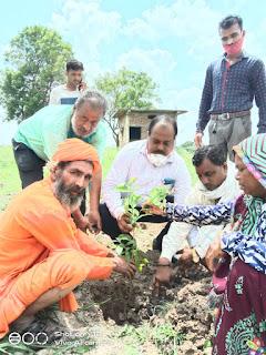 विश्व पर्यावरण दिवस पर विधिक सेवा प्राधिकरण द्वारा किया पोधरोपण