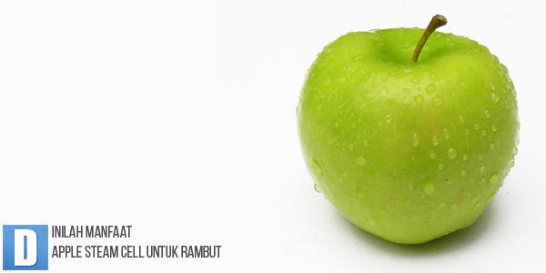 Manfaat Apple Steam Cell, Penumbuh Rambut, Hair Tonic Penumbuh Rambut, Perawatan Rambut, Obat Rambut Alami