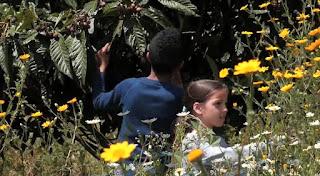 O MUNDO À NOSSA VOLTA - Cinema, cem anos de juventude  - Filme ensaio da escola  E.B.1/JI Vale da Amoreira @ Centre de Experimentação Artística