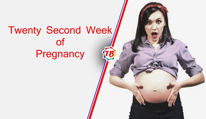 Twenty Second Week of Pregnancy