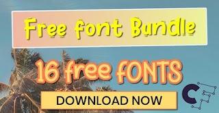Summer Cool Font Bundle