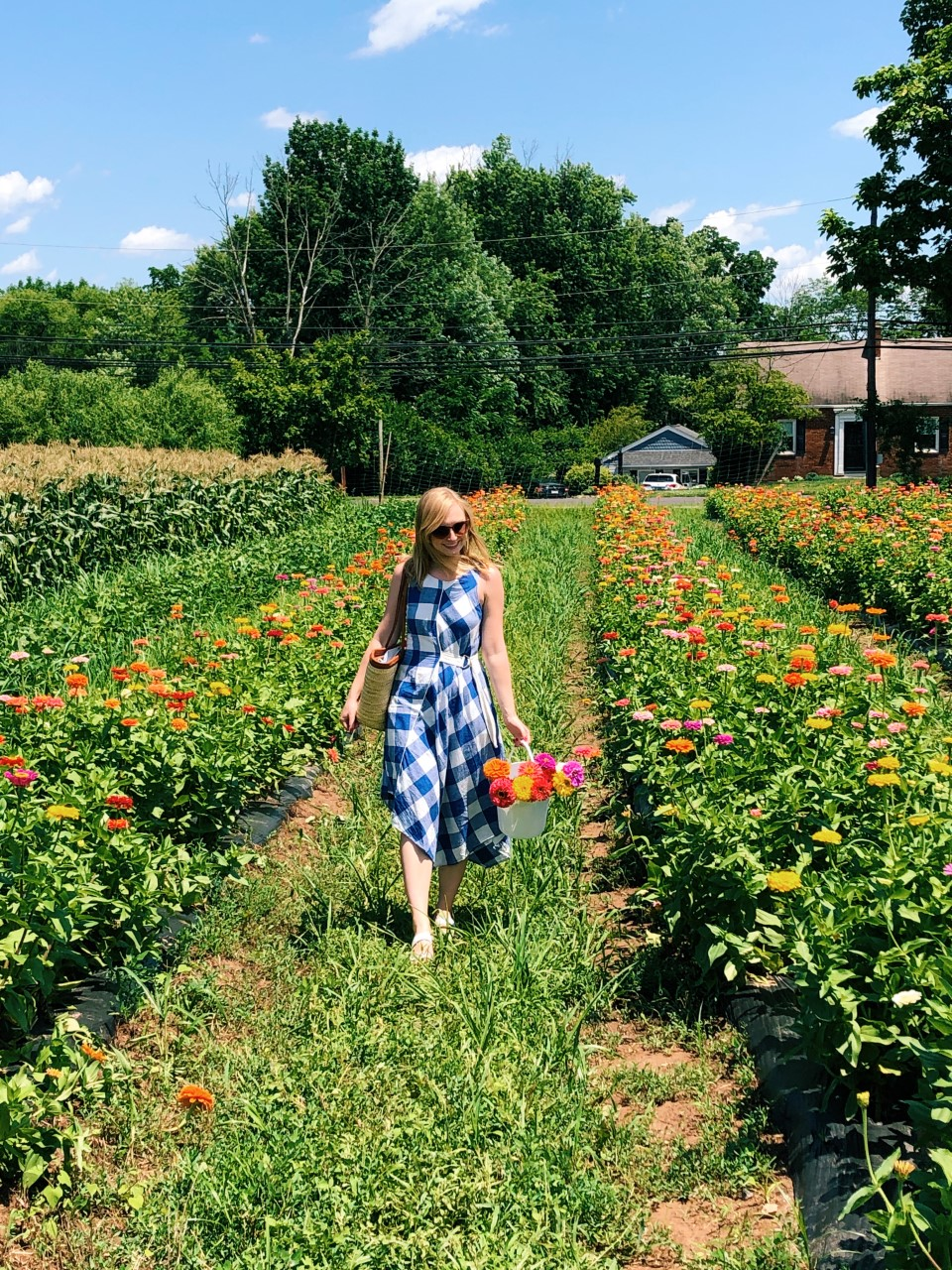 Flower Picking at Maple Acres Farm | Organized Mess
