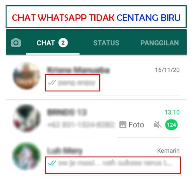 cara agar centang dua di whatsapp tidak berwarna biru