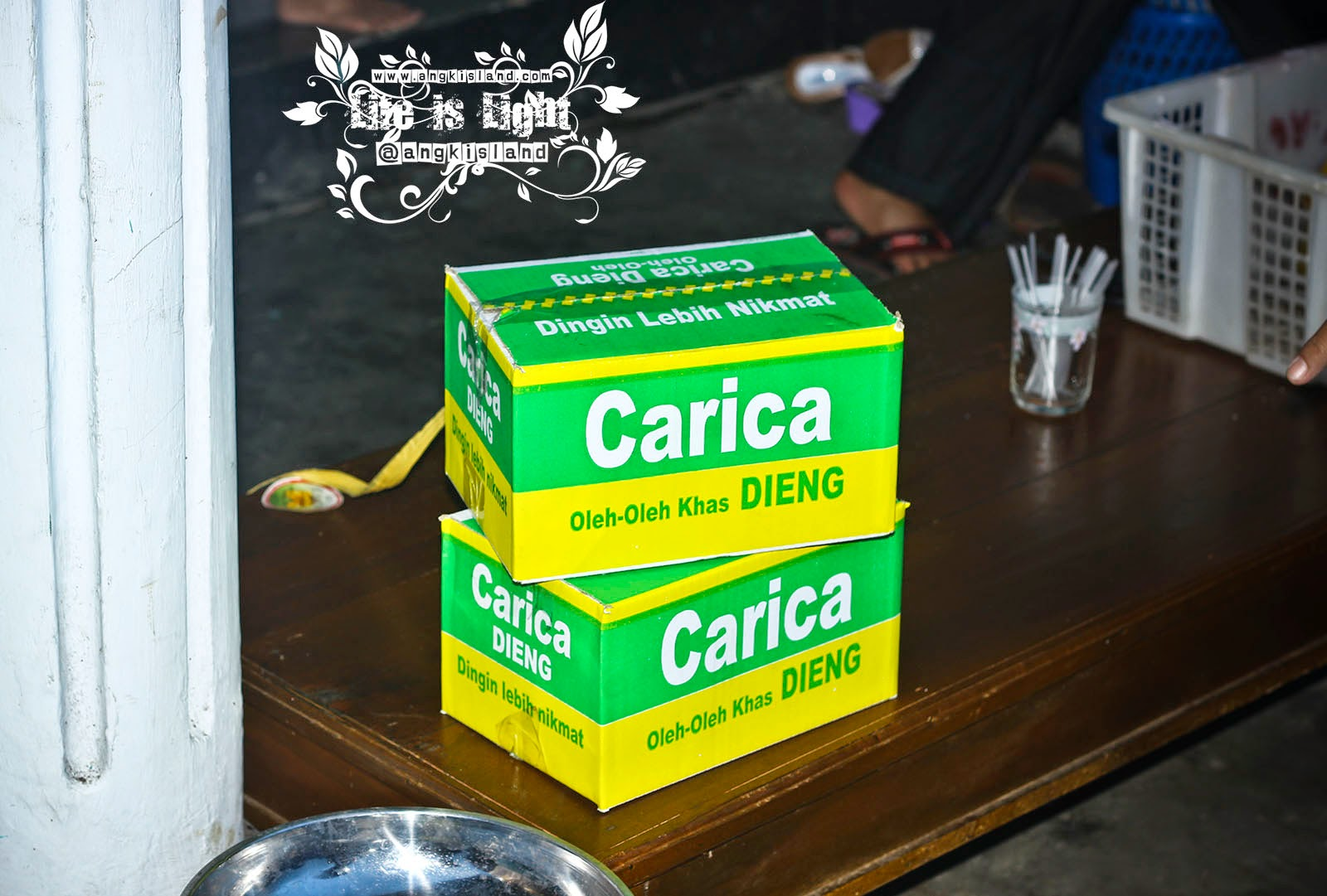 CArica CArdus