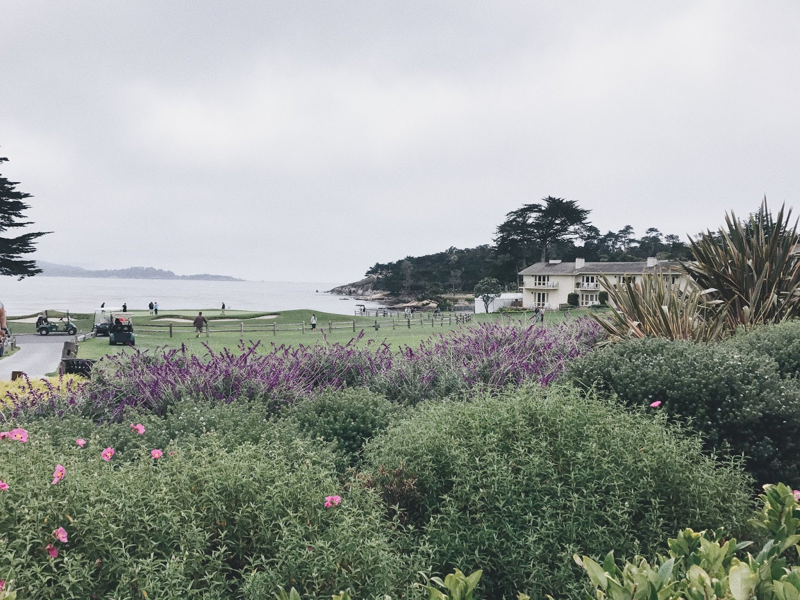CARMEL BY THE SEA | AESTE BLANC