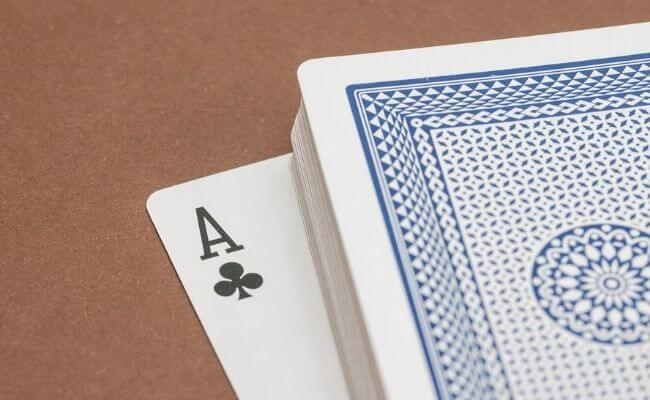 poker stake horse stable coaching