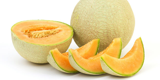 Setyamerchy S Vitamins And Benefits Found In Orange Melon Cantaloupe Cantaloupes provide an excellent source of antioxidants, like vitamin c and vitamin a (in the form of carotenoids), along with important nutrients like potassium, folate, copper, b vitamins, vitamin k. orange melon cantaloupe