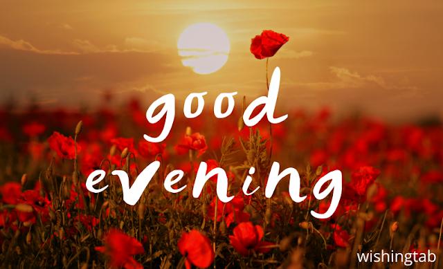 20+ best Good Evening images in 2020 | wishingtab