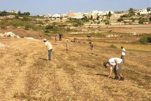 Malta Survey Project finds ancient farm complex under Bidnija fields