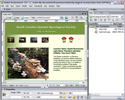 8 7 free full macromedia download windows dreamweaver version for