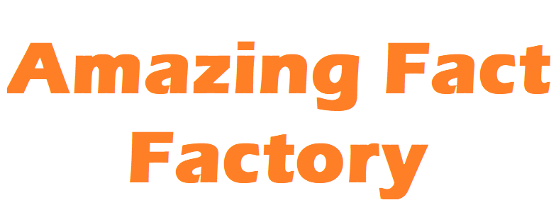 Amazing Fact Factory
