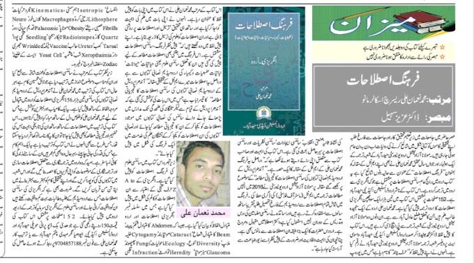 تبصرہ فرہنگ اصطلاحات۔محمد نعمان علی