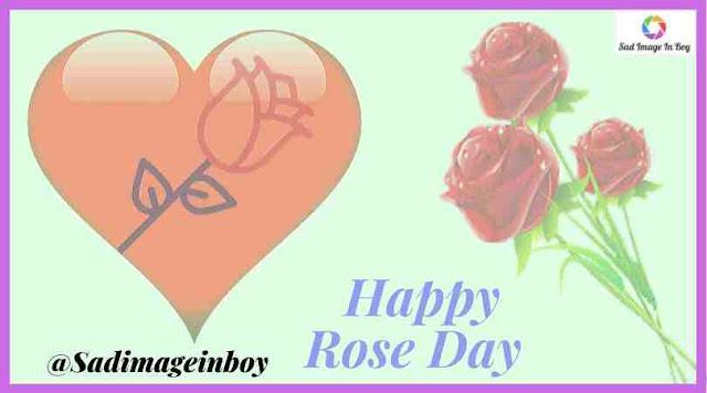 Rose Day Images | rose images, rose image, rose day, rose day images, roses images, happy rose day