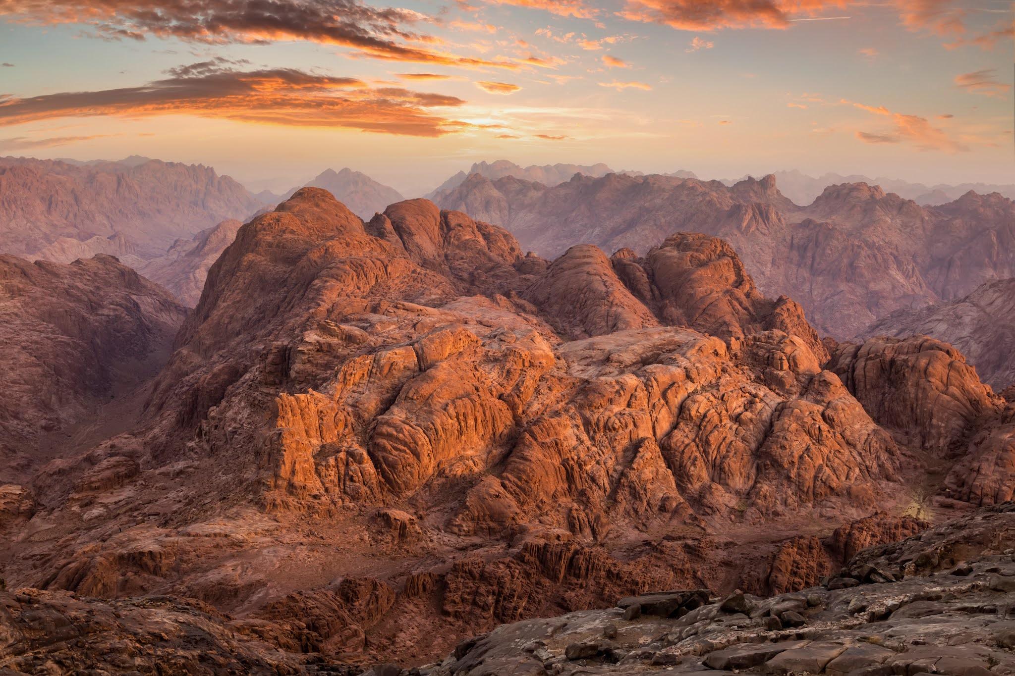 الرئيس السيسي يدعم مشروعات استصلاح الأراضي في سيناء