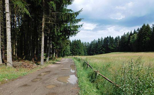 Droga przez górę Pstrążna.