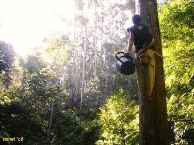 [Script] The Change of Interaction Pattern Between Forest and Community | Dunia Aksara Ku