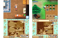 Download Harvest Moon Grand Bazaar Farm Game for Nintendo Ds