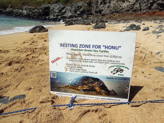 resting zone sign