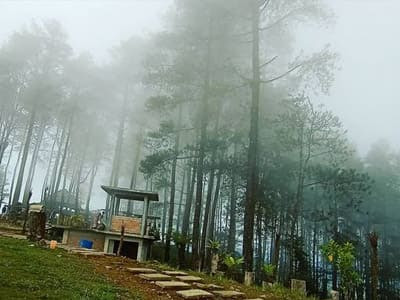 wisata puncak lawang maninjau kabupaten agam