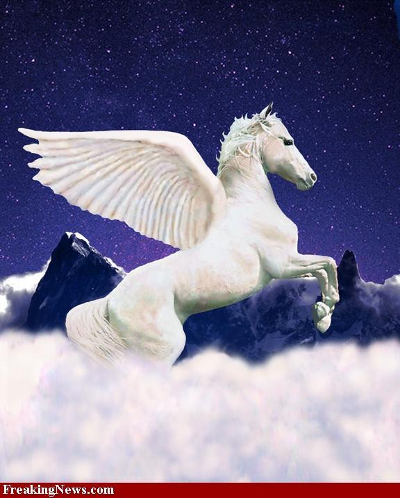 Flying Horse Wallpaper