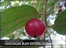 Kandungan buah Kersen (Muntingia calabura) per 100 Gram