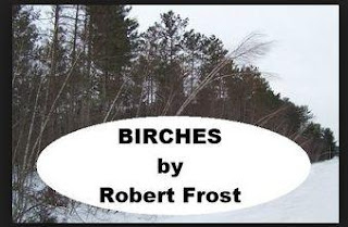 Summary and Analysis birches