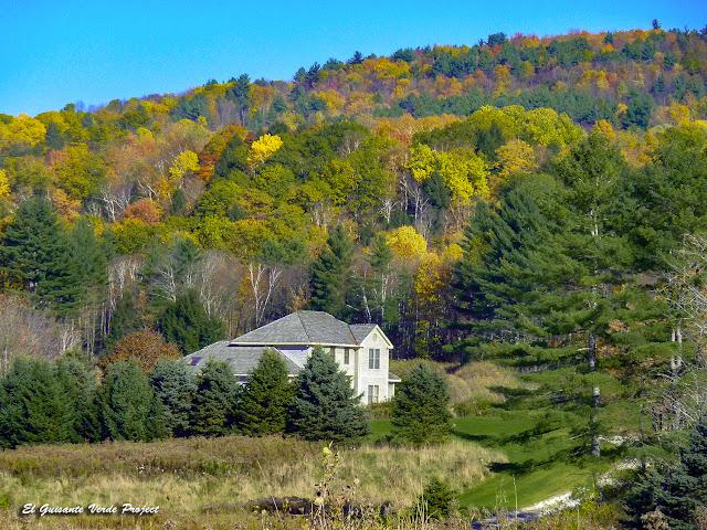 Vermont en Otoño - Etados Unidos por El Guisante Verde Project