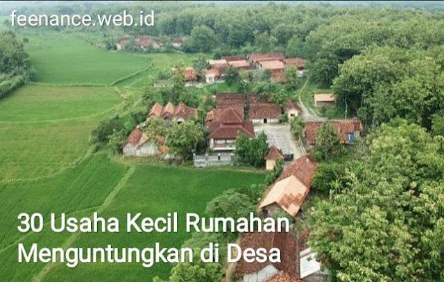 Usaha Kecil Rumahan Menguntungkan di Desa