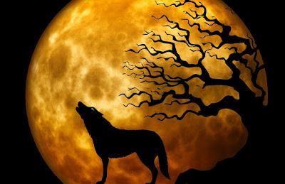 l'urlo della mandragora erica gazzoldi racconto fantasy