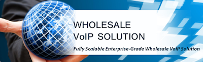Wholesale VoIP Services Provider