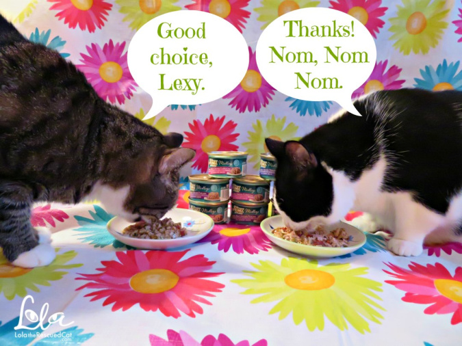 Purina|fancy feast