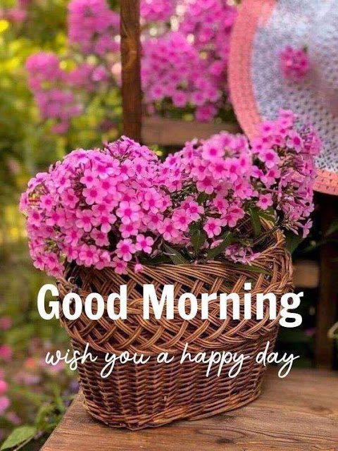 Good Morning flower Wishes Images download