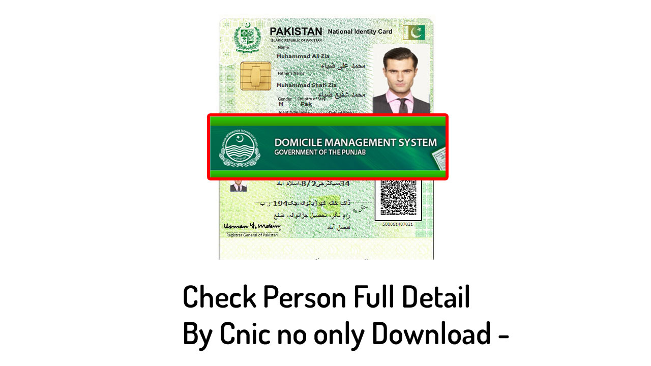 Check Online punjab domicile verification, Family Detail, Person